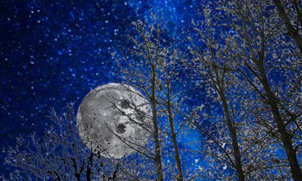 10 New Moon